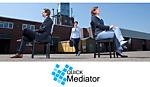Mediation im Franchise-System